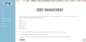 management-services-debt